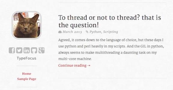 Шаблон Wordpress - typefocus