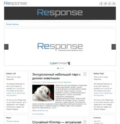 Шаблон WordPress - Response