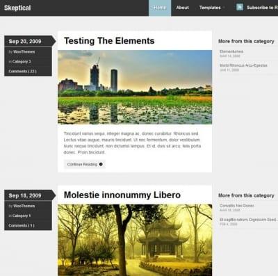 Шаблон WordPress - Skeptical