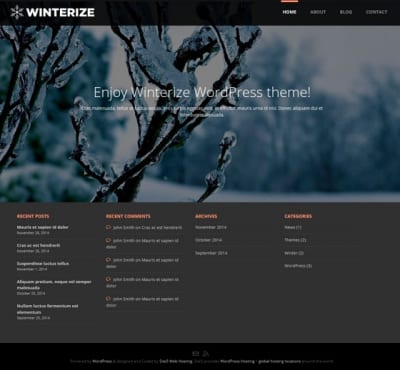 Шаблон WordPress - Winterize