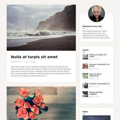 Шаблон WordPress - Amadeus