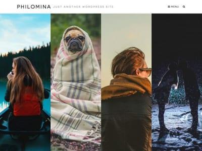 Шаблон WordPress - Philomina