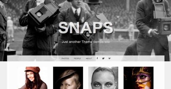 Шаблон Wordpress - Snaps