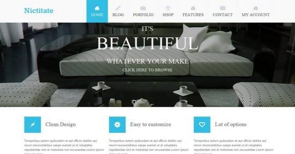 Шаблон Wordpress - Nictitate