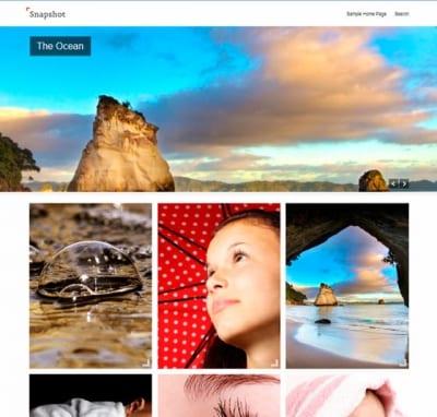 Шаблон WordPress - Snapshot
