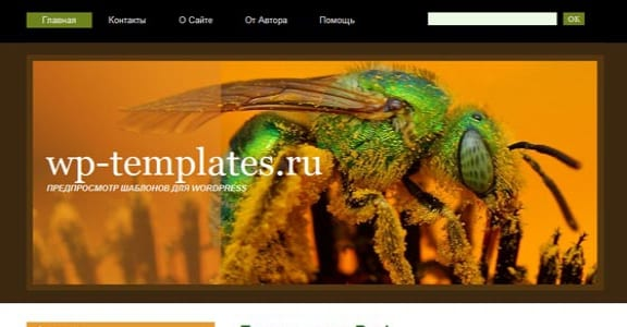 Шаблон Wordpress - SweatBee