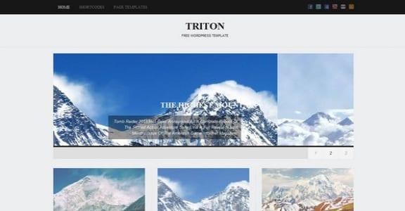 Шаблон Wordpress - Triton Lite