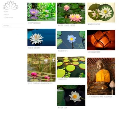 Шаблон WordPress - Water Lily